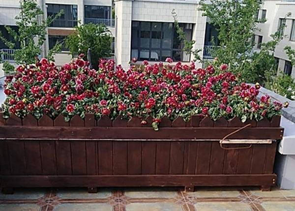 空中花园实木花箱